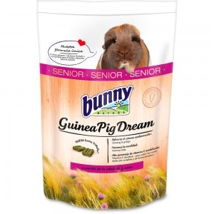 Bunny Dream - Cobaya Senior