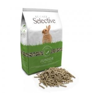 Science Selective Conejo Junior
