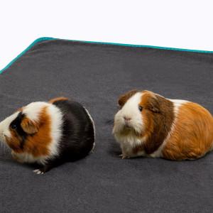 Lecho bunny bedding