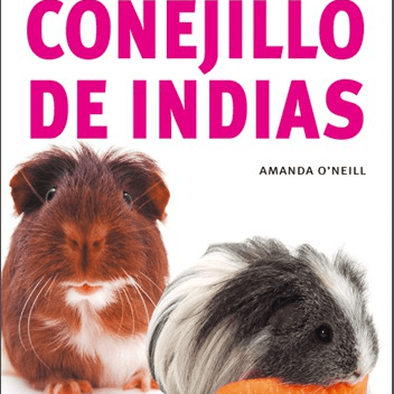 50 Consejos de Oro para tu Conejillo de Indias