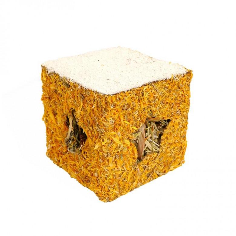 Golden Box - Especial Navidad