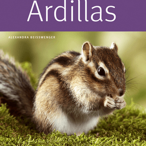 Ardillas