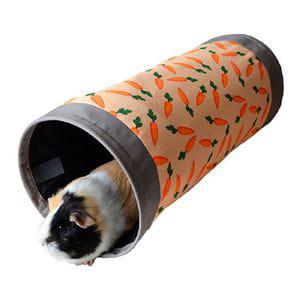 Túnel Zanahorias