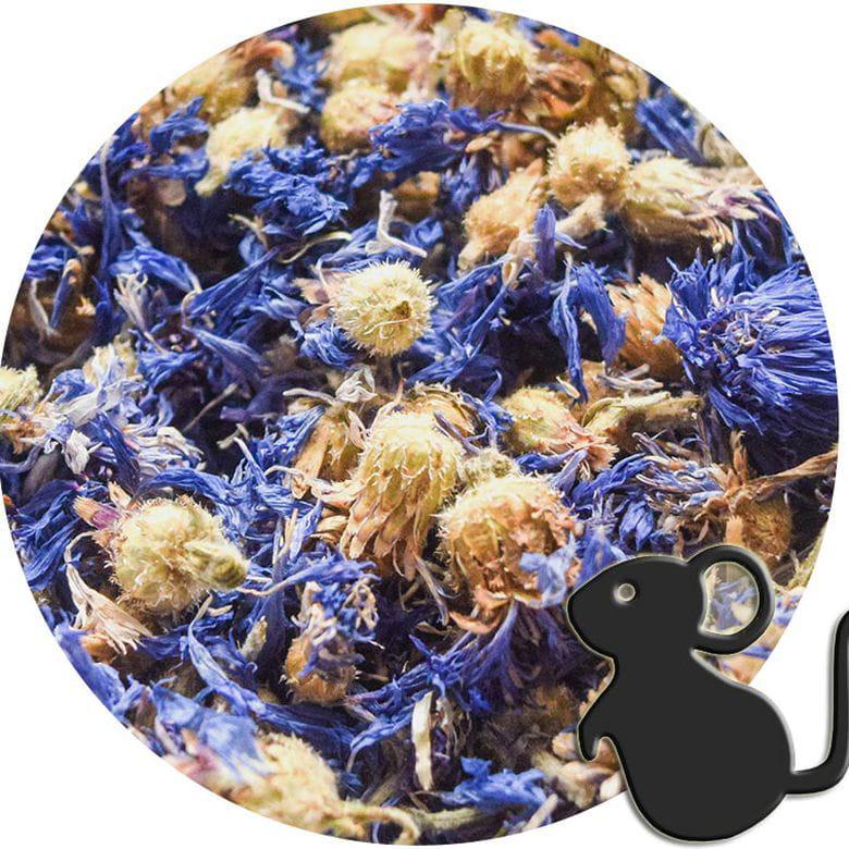 Flores de Aciano azul