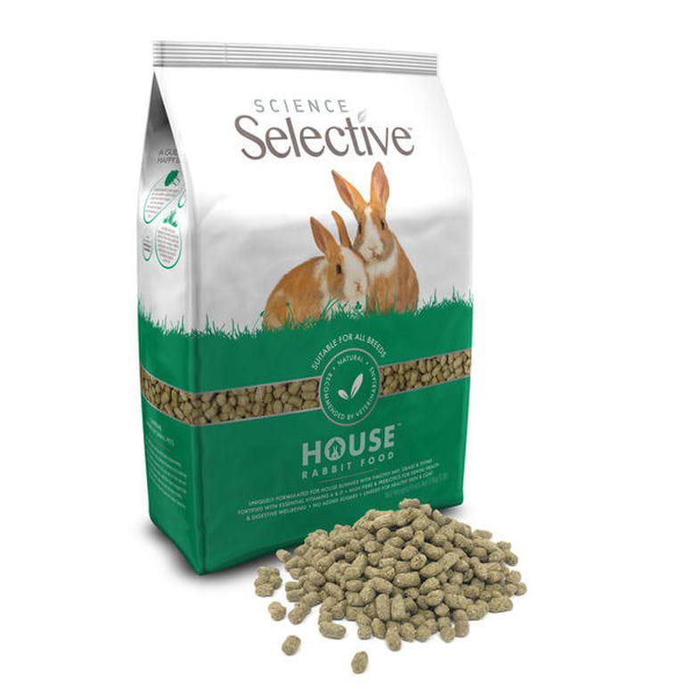 Science Selective Conejo - House